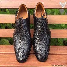 Giày da cá sấu thật giá rẻ GCS08