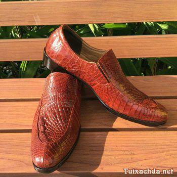 Giày da cá sấu thật giá rẻ tphcm GCS03