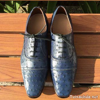 Giày nam da đà điểu thật giá rẻ GDD02